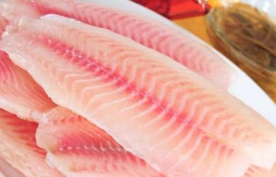 tilapia health concerns